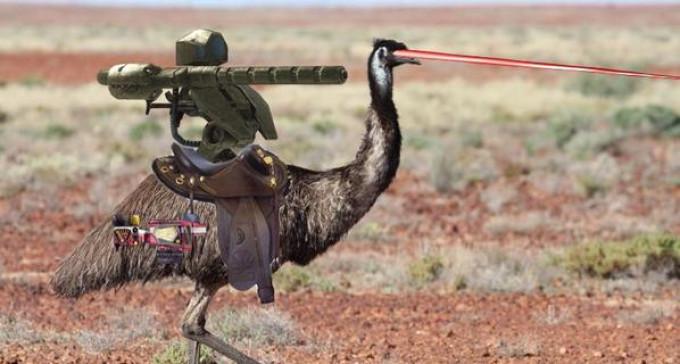 Wielka Wojna Uzbrojonych Ludzi z wszystkożernym nielotem emu (100 lat temu)