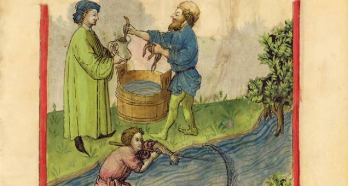Śliska sprawa: ryba jako waluta, czyli czemu w średniowieczu płacono węgorzami