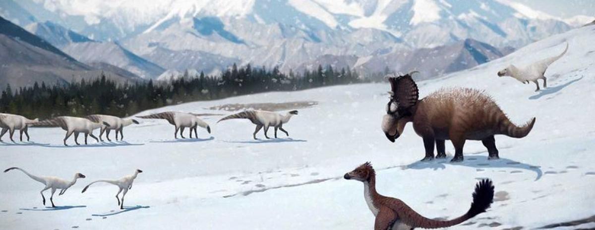 Kochanie, pomniejszyłem dinozaury, czyli jak te stworzenia przetrwały zimę