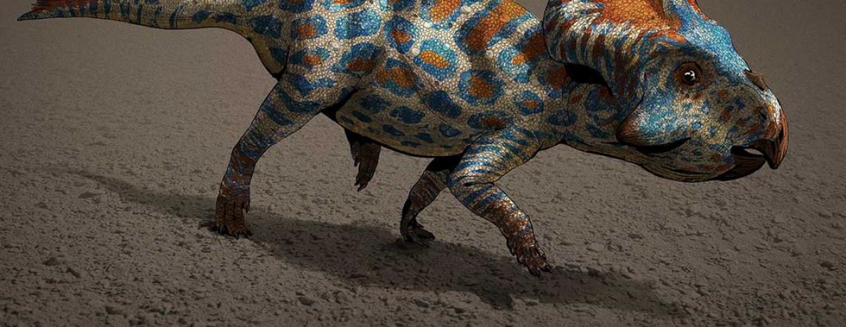 TOP 10 największych odkryć o dinozaurach z 2020 roku